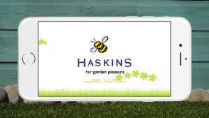 Haskins Buzzy Bee End Game Screen