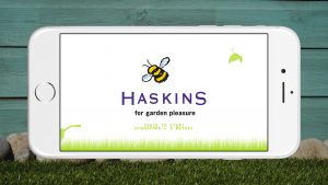 Haskins Buzzy Bee Start Screen